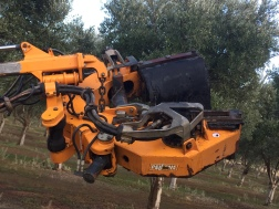 Shaker Head Buggy Olive Harvesting machine