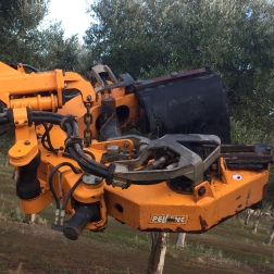 Shaker Head Buggy Olive Harvesting machine