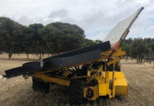 COE Olive Fruit Receiving Unit
